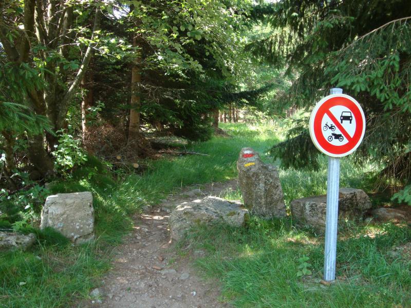 Bospaadje midden in natuurgebied verboden voor uit de lucht gevallen auto\'s....
