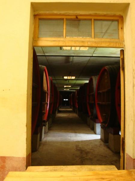 Wijnvaten in het klooster van Notre-Dame de Neiges. Bij navraag rijpt de wijn inmiddels elders en is deze er alleen nog voor de show..Zie http://www.notredamedesneiges.com