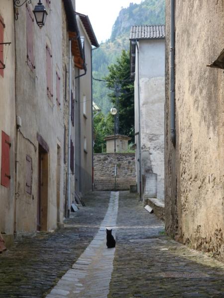 steegje met kat in Florac
