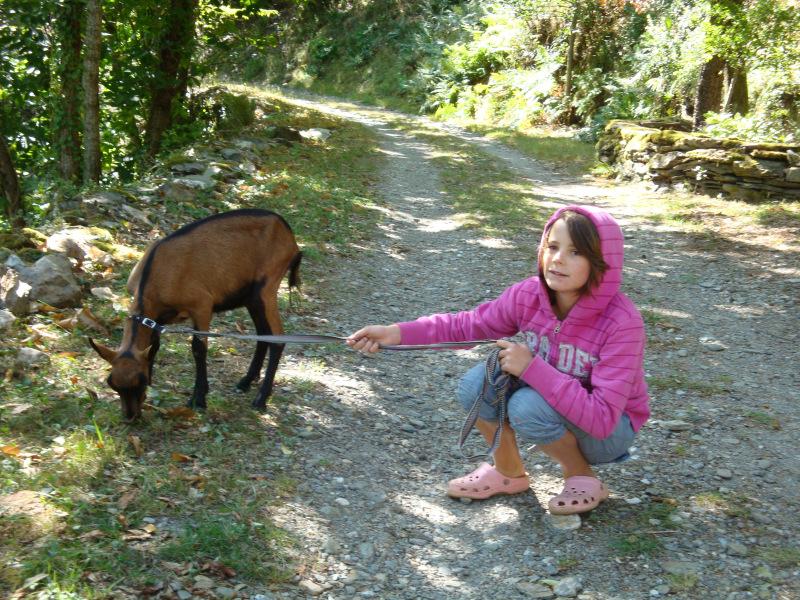 (later bleek Vlaams) meisje met weggelopen geit, vlak voor Saint Etienne Vallée Francaise